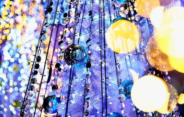Picture light, lights, reflection, balls, tree, garland, holidays, bokeh