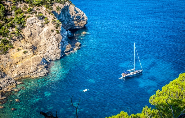 Picture sea, trees, rocks, yacht, shrubs