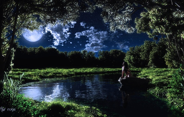 Picture grass, girl, clouds, trees, night, lake, the moon, stone, art, naked