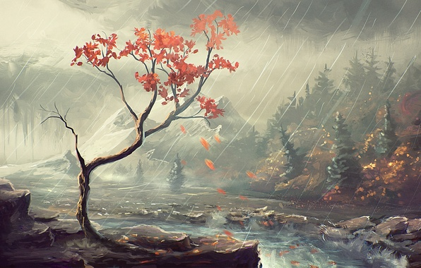 Picture autumn, forest, trees, river, rain, shore, art
