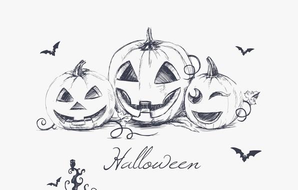 Picture minimalism, Halloween, bats, halloween, minimalism, bats, evil pumpkins, hand drawing, hand drawing, creepy owl, owls …