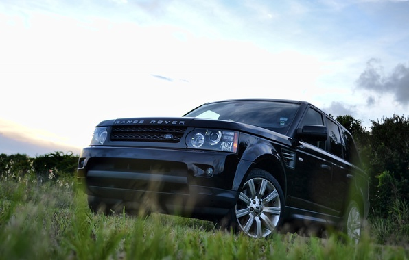 Picture the sky, grass, trees, black, sport, grass, Land Rover, black, sky, front, tree, range rover …