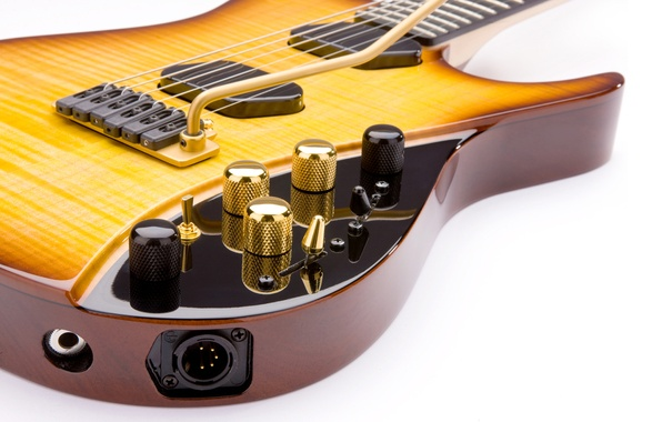 Picture guitar, electric guitar, Stratocaster, six-string