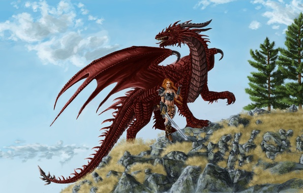 tails wings dragons - photo #9