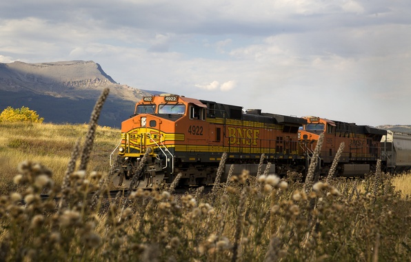Picture nature, rails, train, cars, railroad, locomotive