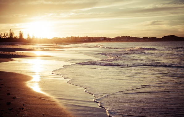 Picture wave, beach, the sky, water, the sun, clouds, trees, landscape, nature, reflection, background, Wallpaper, widescreen, …