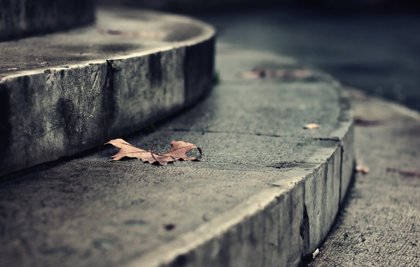 Picture autumn, leaves, macro, Park, mood, earth, street, romance, the building, building, ladder, floor, steps, street