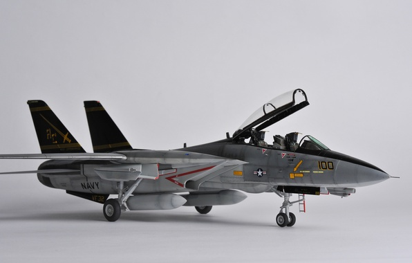 "Picture toy, fighter, jet, Tomcat, double, model, Grumman F-14, ""Tomcat"""