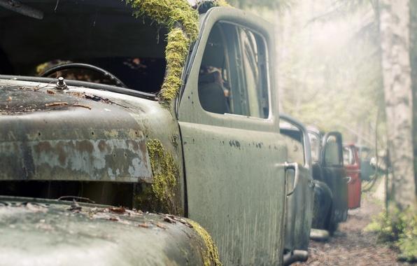 Picture macro, machine, moss, scrap