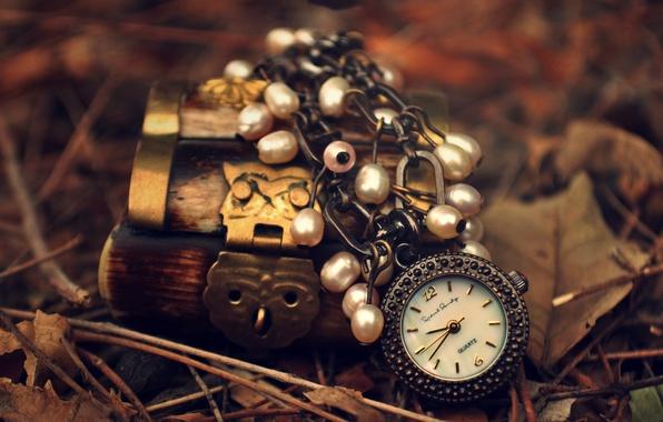 Picture autumn, leaves, castle, owl, watch, box, suspension