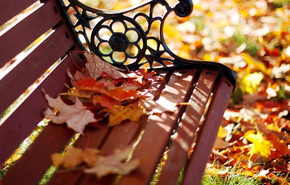 Picture autumn, leaves, macro, bench, Park, yellow, blur, shop, shop, orange, bench