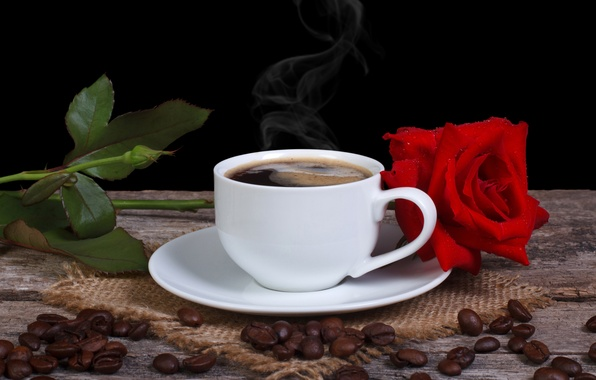 Picture flower, rose, coffee, grain, Cup, red, saucer