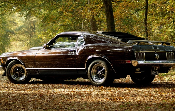 Picture auto, autumn, mustang, musclecar