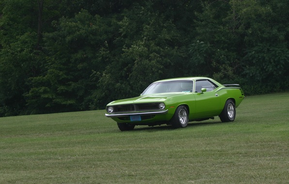 Picture muscle car, 340, Barracuda, Plymouth