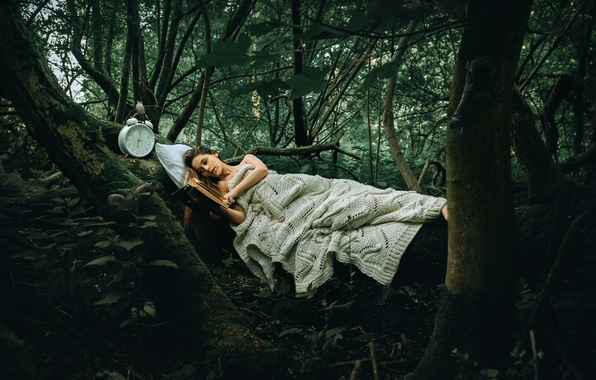 Picture forest, girl, watch, book, Rosie Hardy, Another Story