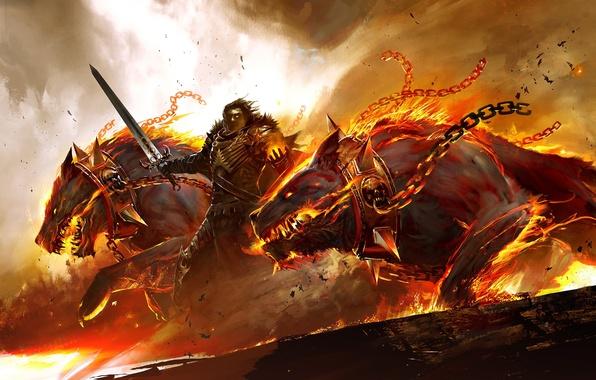 Picture fire, sword, armor, warrior, collar, chain, Guild Wars 2, dogs, Cerberus