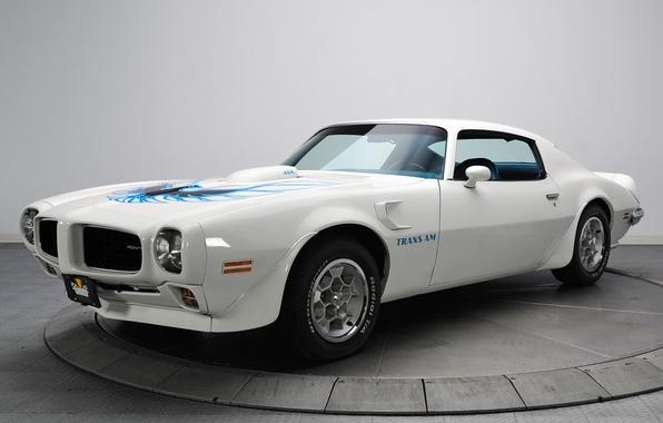 Picture white, car, Pontiac, Pontiac, Firebird, Trans Am, 1973