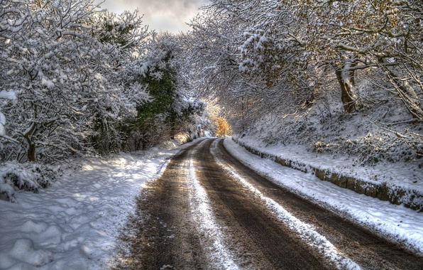 Picture winter, road, forest, snow, trees, landscape, mountains, nature