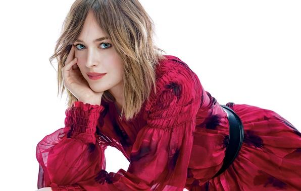 Picture model, makeup, dress, actress, hairstyle, white background, photoshoot, It, Dakota Johnson, Dakota Johnson, Mote Sinabel …