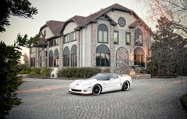 Picture Chevrolet, City, Carbon, cars, auto, White, Photo, wallpapers auto, Photography, Corvett, Chevrolet Corvett