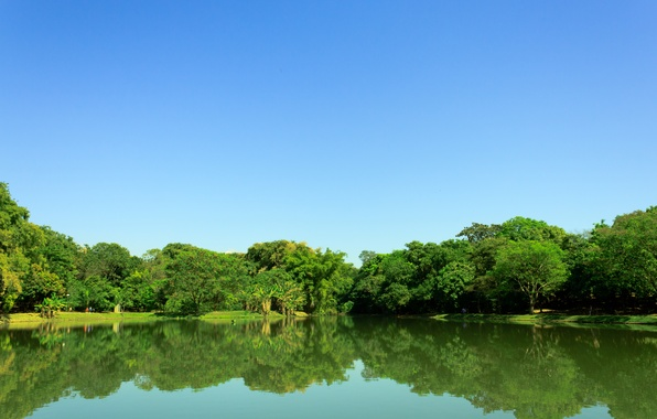 Picture the sky, trees, lake, Park, reflection, mirror