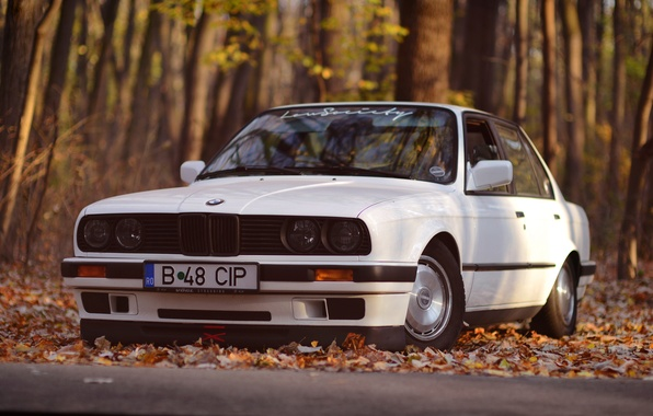 Picture BMW, White, E30