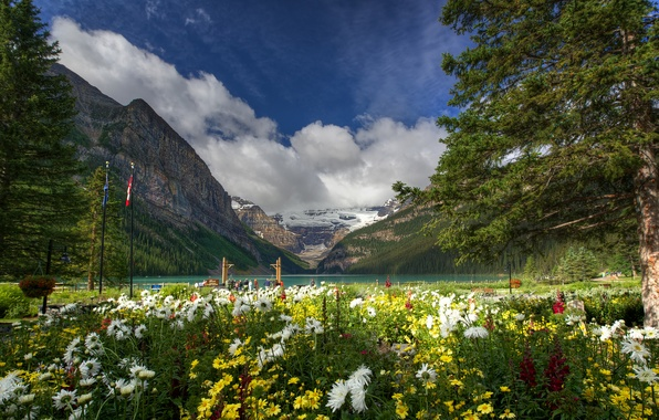Photo wallpaper flowers, mountains, nature, trees, Canada, lake, Lake Louise, Banff National Park, Canada