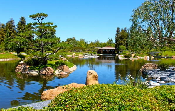 Picture the sky, trees, house, pond, Park