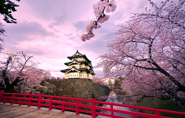 Picture the sky, clouds, trees, bridge, pond, castle, Japan, Sakura, flowering, Hirosaki