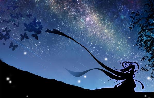 Picture the sky, girl, stars, butterfly, night, art, vocaloid, hatsune miku, Vocaloid, mokoppe