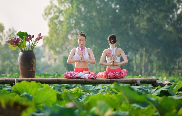 Picture summer, flowers, girls, concentration, gymnastics, yoga, Asian girls