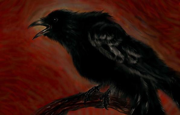 Picture figure, branch, Raven