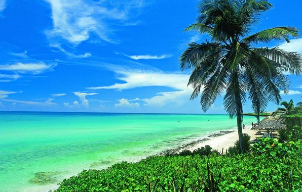Photo Wallpaper Beach The Sun Palma Ocean Shore Beauty