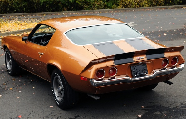 Picture leaves, orange, background, coupe, Chevrolet, Camaro, Chevrolet, 1971, Camaro, rear view, Muscle car, Muscle car, …
