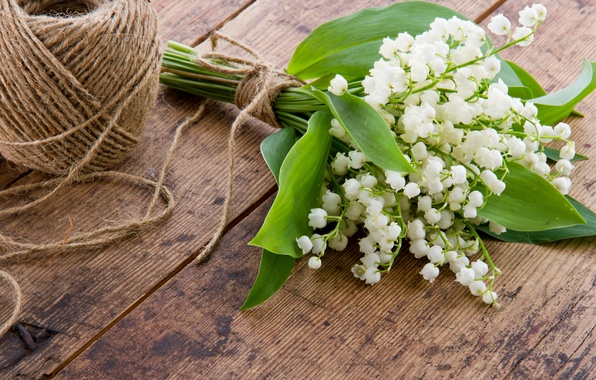 Picture flowers, spring, white, thread, lilies of the valley, a bunch, a coil