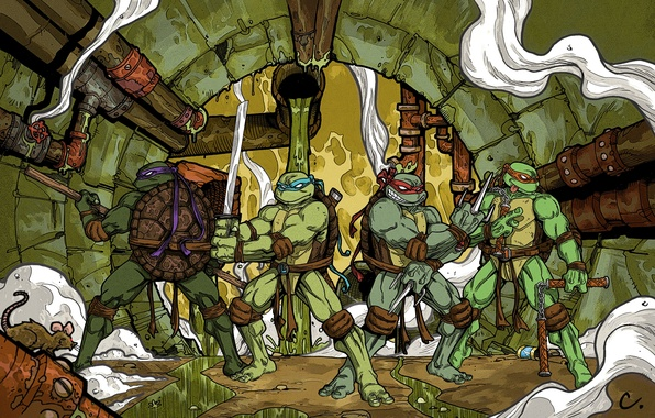 Picture Rafael, Donatello, Leonardo, Michelangelo, teenage mutant ninja turtles