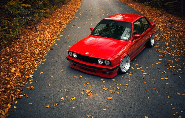 Picture road, autumn, leaves, BMW, E30