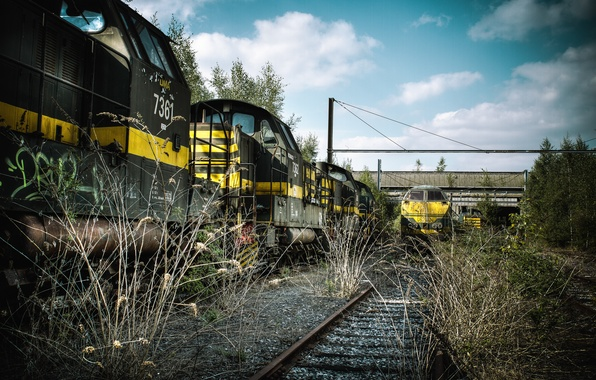 Picture grass, rails, train, cars, railroad, dry