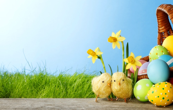 Picture grass, flowers, chickens, eggs, spring, colorful, Easter, grass, flowers, daffodils, spring, painted, eggs, easter, daffodils, …