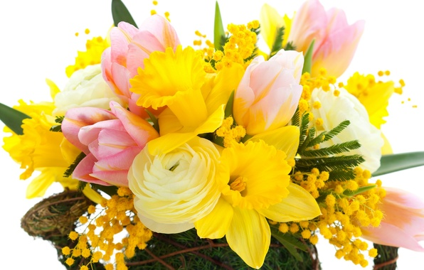 Picture leaves, flowers, beauty, bouquet, petals, tulips, pink, yellow, pink, yellow, flowers, daffodils, petals, bouquet, bright, …