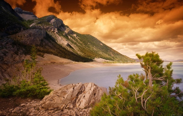 Picture SEA, MOUNTAINS, The OCEAN, The SKY, CLOUDS, NEEDLES, SHORE, TREES, REEFS, ROCKS