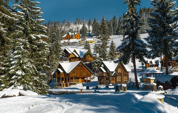 Picture winter, forest, the sun, snow, trees, home, ate, Ukraine, the village, Carpathians