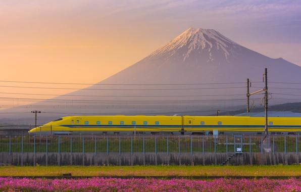 Picture Japan, twilight, sunset, flowers, dusk, Fuji, bullet train