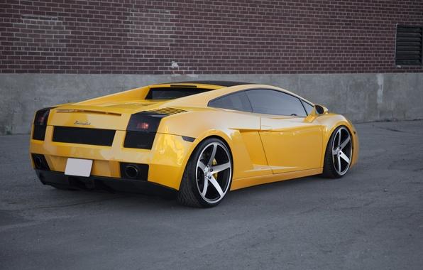 Picture yellow, gallardo, lamborghini, rear view, yellow, headlights, Lamborghini, Gallardo, lp560-4