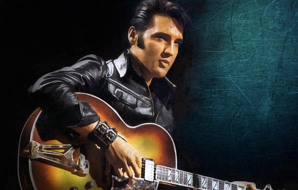 Picture musician, singer, Rock-n-roll, Elvis Presley, Elvis Presley