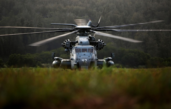 Picture helicopter, military, Sikorsky, transport, heavy, CH-53, Sea Stallion