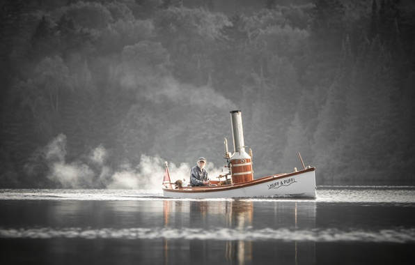 Picture river, boat, dog, the old man, steam boat