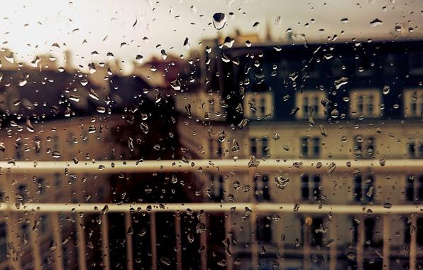 Picture autumn, glass, drops, the city, rain, window, wet