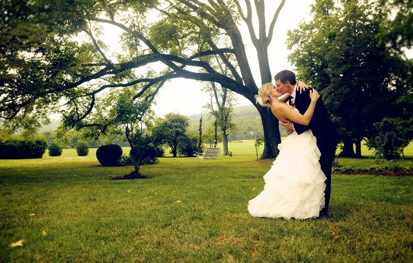 Picture greens, grass, girl, tree, white, kiss, dress, costume, guy, the bride, the groom