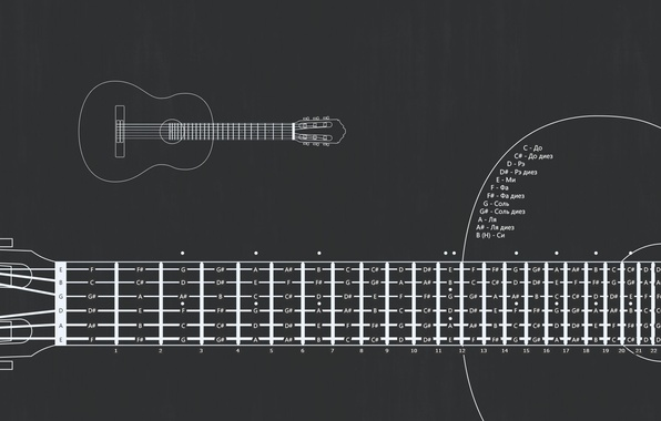 Picture notes, guitar, scheme, strings, frets, layout, The layout of the frets